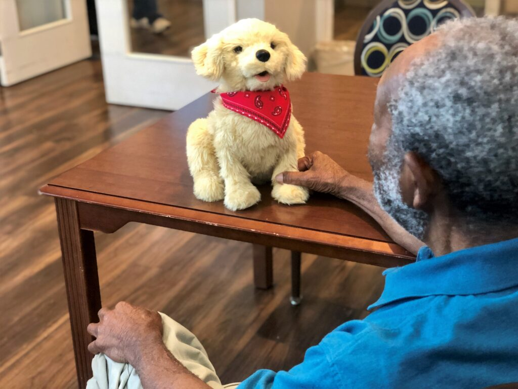 Residents enjoy interacting with robotic companion pets and therapy animals who visit the community